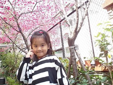 SAM_0904 (小型).JPG
