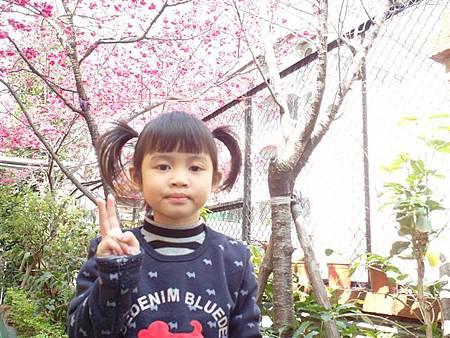SAM_0910 (小型).JPG