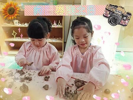 DSC01426_meitu_7.jpg