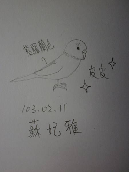 蘇妃雅瘋仿畫13