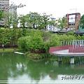 秋紅谷 25.jpg