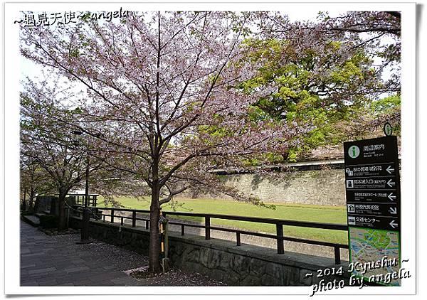 熊本城09.jpg