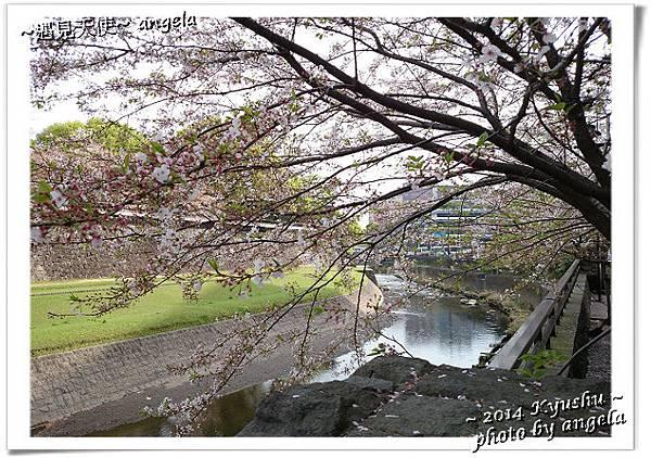 熊本城11.jpg