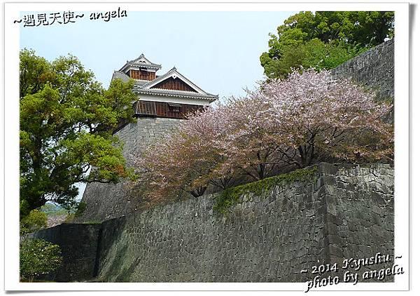 熊本城20.jpg