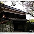熊本城30.jpg