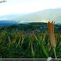 六十石山08.jpg
