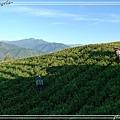 六十石山09.jpg