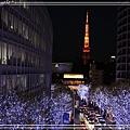 東京聖誕燈飾06.jpg