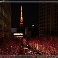東京聖誕燈飾09.jpg