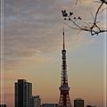 東京聖誕燈飾21.jpg