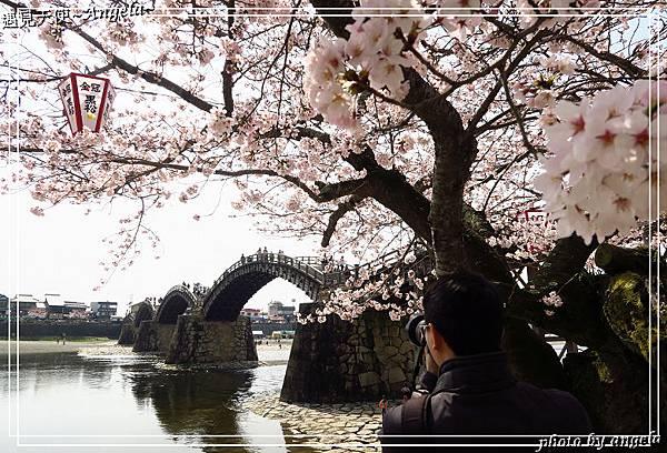 岩囯錦帶橋13.jpg