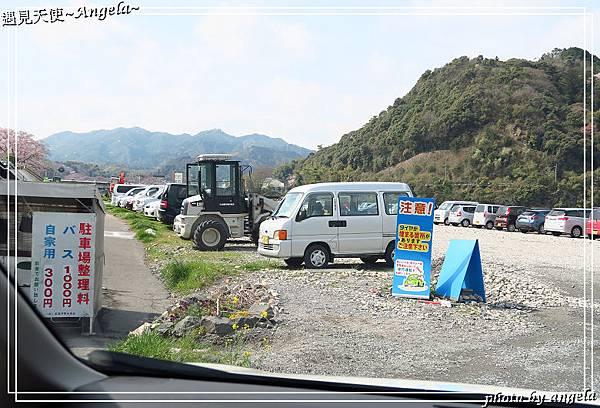 岩囯錦帶橋29.jpg