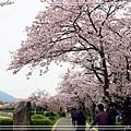 廣島平和公園10.jpg