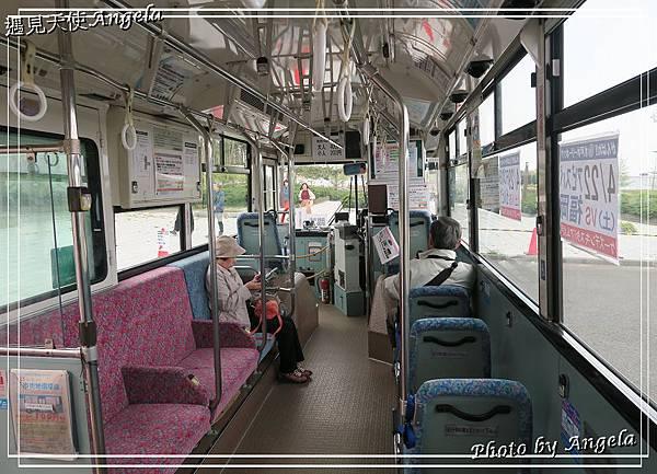 日立海濱公園交通25.jpg