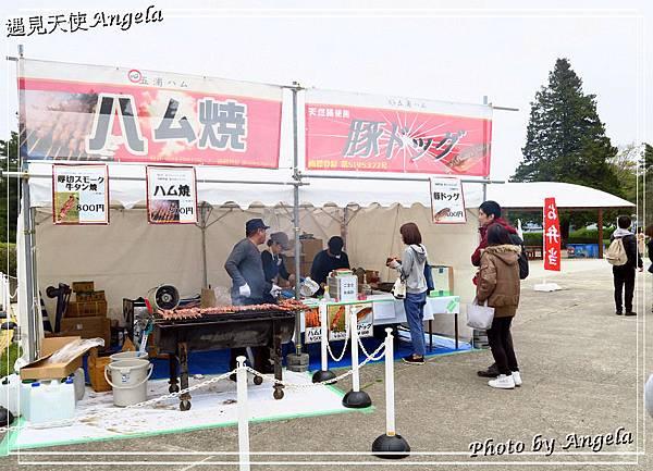 日立海濱粉蝶花05.jpg
