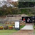 日立海濱粉蝶花07.jpg