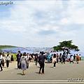 日立海濱粉蝶花10.jpg