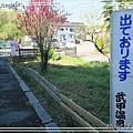 秩父羊山公園07.jpg