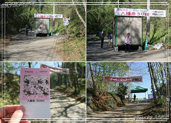 秩父羊山公園12.jpg