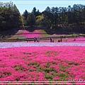 秩父羊山公園24.jpg