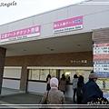 足利花卉花園02.jpg