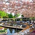 足利花卉花園06.jpg