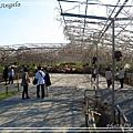 足利花卉花園15.jpg