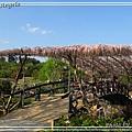 足利花卉花園19.jpg