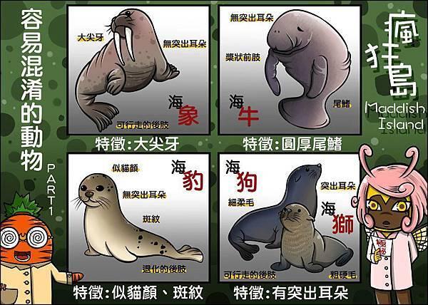 sea-animal
