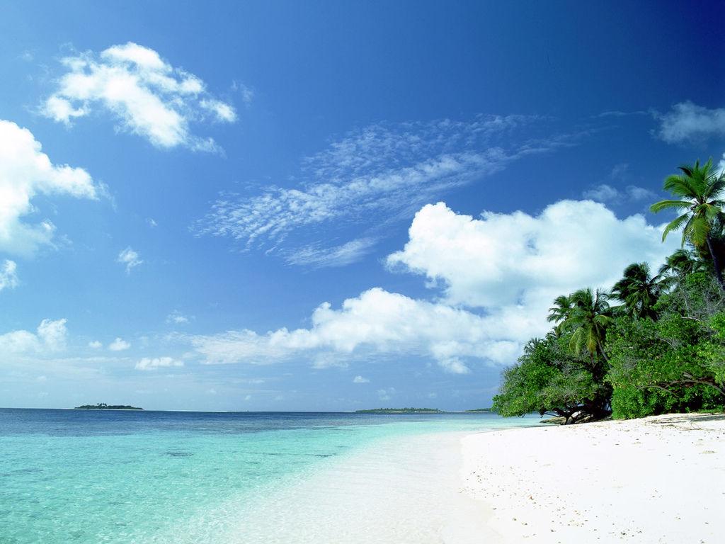beach_2010