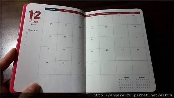 2015 diary10.jpg