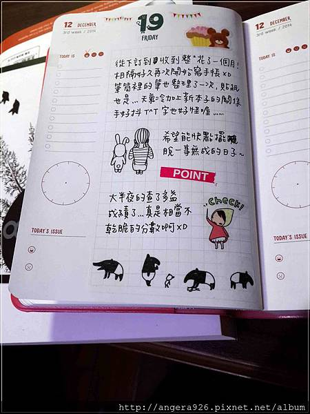 2015 diary14.jpg