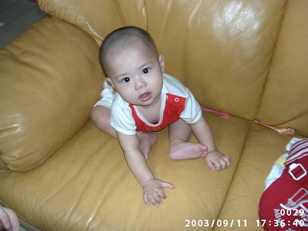 PIC00029.JPG
