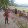 CAM01496.jpg