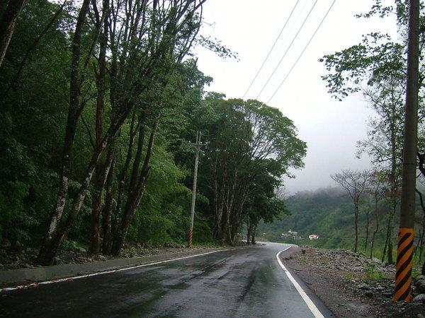 三度重建後的桐林道路