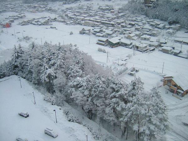 下了一夜雪的高山市清晨
