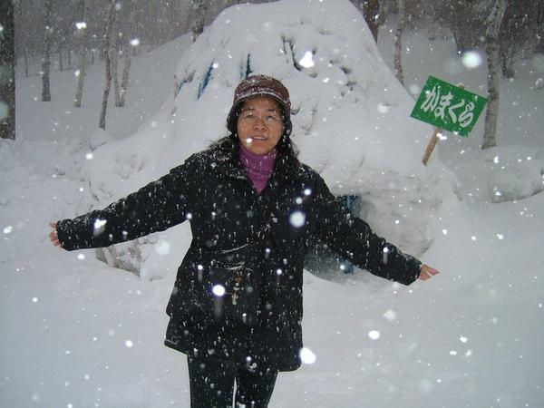 正在下雪的長野縣白樺湖