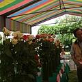 桐林社區玉山花卉班