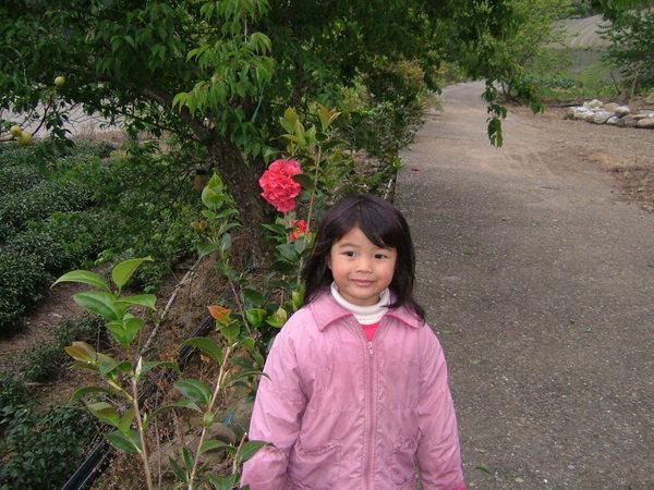 08.03.08逸軒園小花園