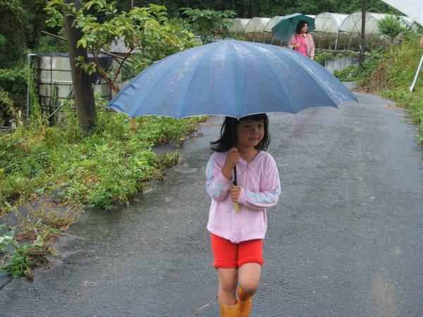 08.07.18卡玫基颱風後