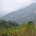 東埔溫泉區觀光吊橋08.10.30.JPG