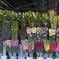 2008.11.26昆明花卉市場.JPG