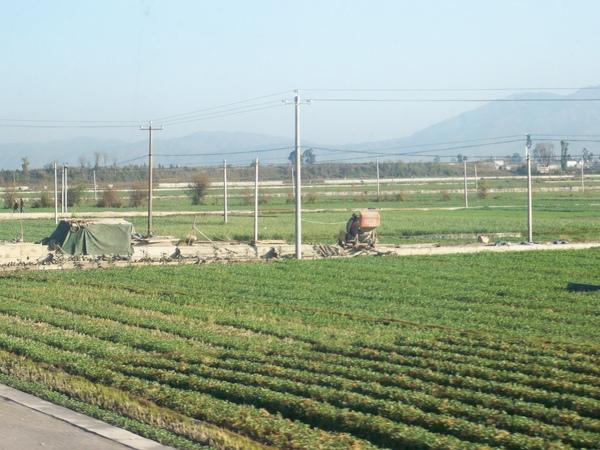 08.11.24大理農村田園