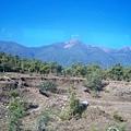 08.11.24雲貴的荒野植被