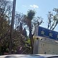08.11.24麗江古城區入口馬路