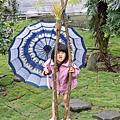 09.03.07春雨後