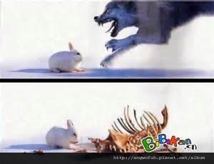 幸福企業快樂人╱兔子如何吃掉狼?....................轉貼經濟日報(有感)