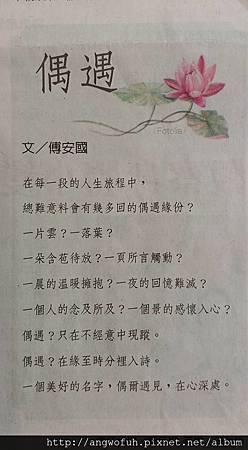 #拙作 / #偶遇