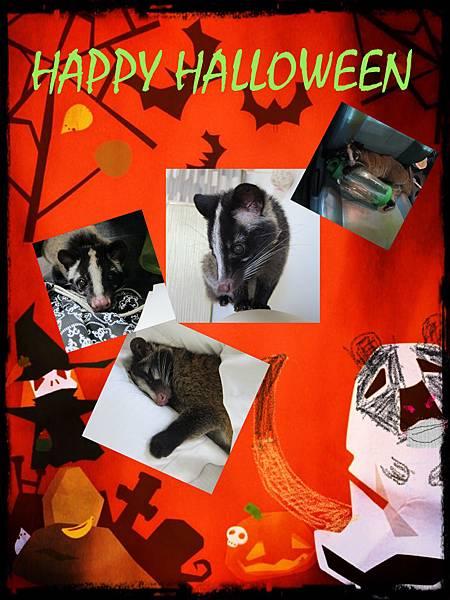 happy Halloween2.jpg