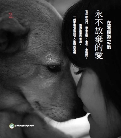 永不放棄的愛 封面.jpg